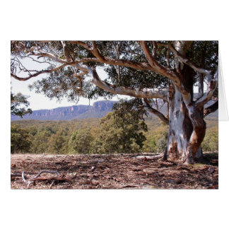 Megalong Valley Card