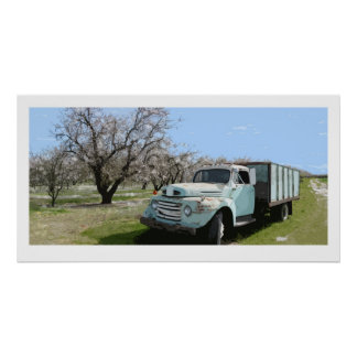 Megan's Truck in Almond blossoms Poster