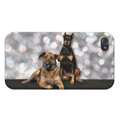 Megyan Doberman - Berkeley Mastiff X Covers For iPhone 4