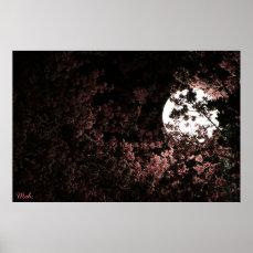 Meh. Sakura by Bentley Poster