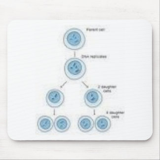 meiosis and mitosis mouse pad