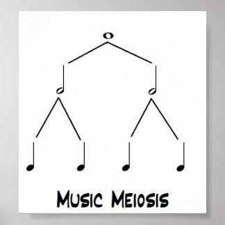 Meiosis de la música póster