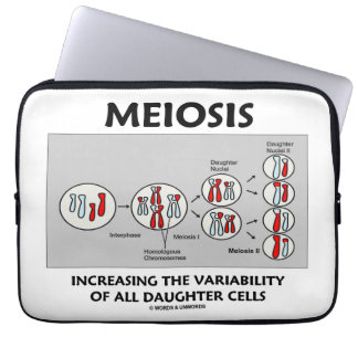 Meiosis Increasing Variability All Daughter Cells Computer Sleeve