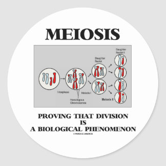 Meiosis Proving That Division Is A Biological Round Sticker