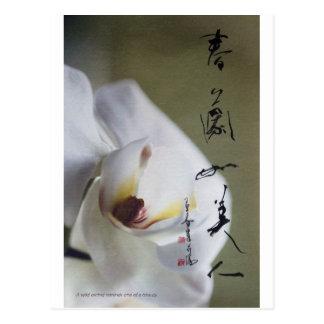 meitokai postcard 4