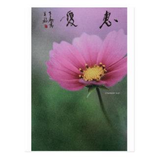 meitokai postcard 6