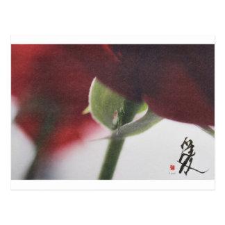 meitokai postcard 7