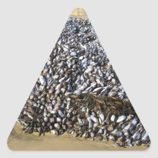 Mejillones en la ensenada pegatina triangular