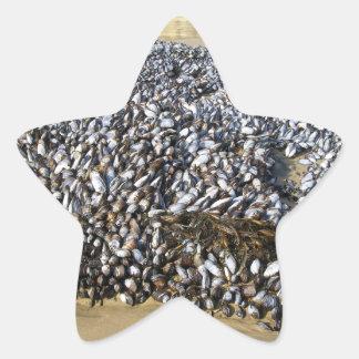 Mejillones en la ensenada pegatina en forma de estrella