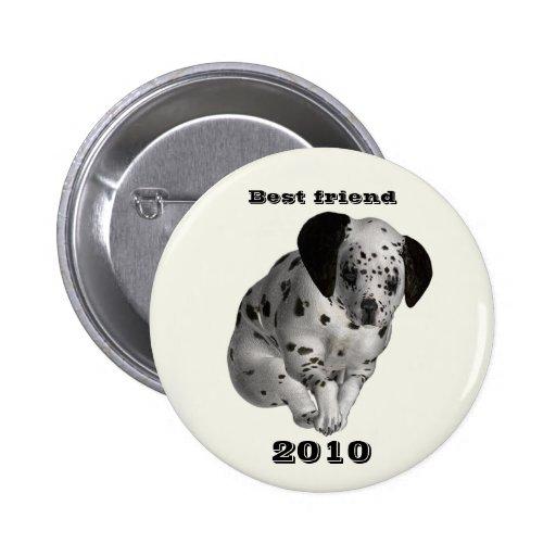 Mejor amigo, 2010 pin