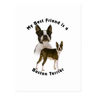 Mejor amigo Boston Terrier Postal