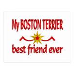 Mejor amigo de Boston Terrier Postal