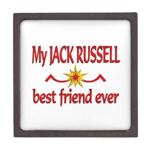 Mejor amigo de Jack Russell Caja De Regalo De Calidad
