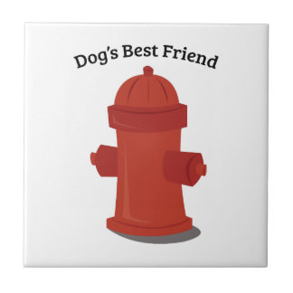 Mejor amigo de los perros azulejo