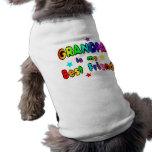 Mejor amigo del abuelo ropa para mascota