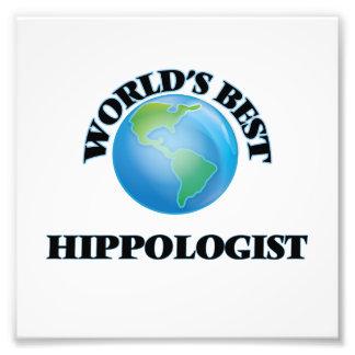 Mejor Hippologist del mundo Fotografía
