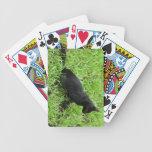 mejora gato negro en la hierba baraja de cartas