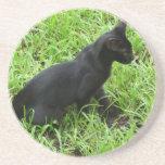 mejora gato negro en la hierba posavasos manualidades