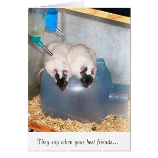 Mejores amigos 1 tarjeta de felicitación