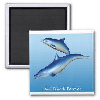 Mejores amigos azules de los delfínes para siempre imán de frigorifico