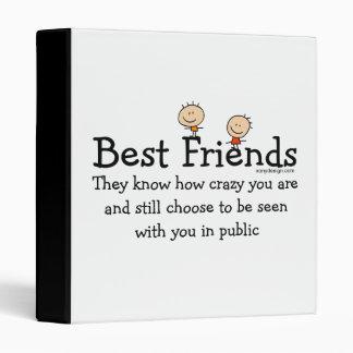 "Mejores amigos carpeta 1"""