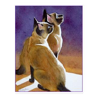 Mejores amigos, gatos siameses postales