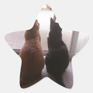 Mejores amigos pegatina en forma de estrella