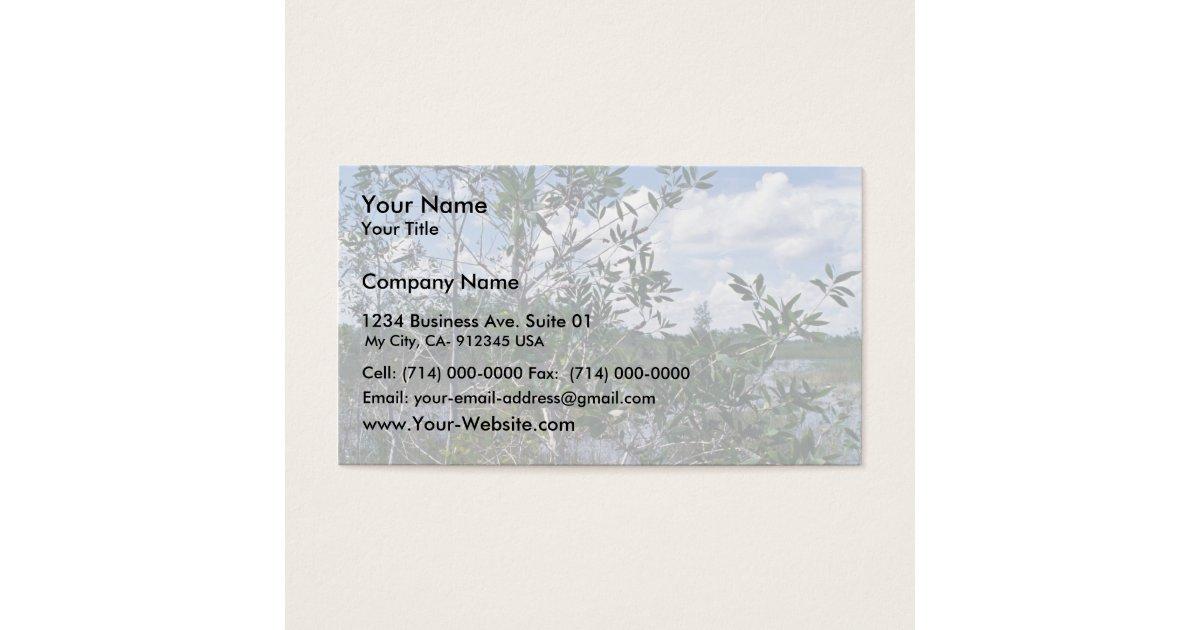 Melaleuca in swamp area business card | Zazzle.com