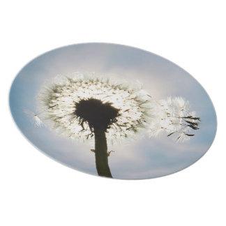 Melamine plate breath flower 01