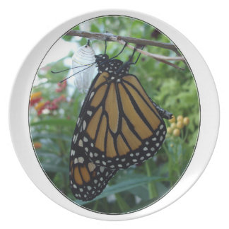 Melamine Plate,Monarch Style #1a Plate