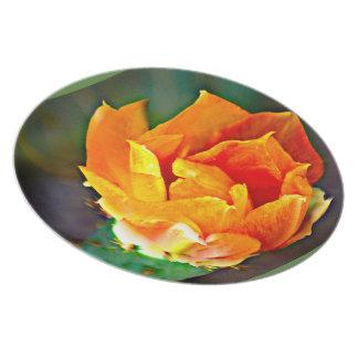 Melamine Plate - Orange Prickly Pear Cactus Flower