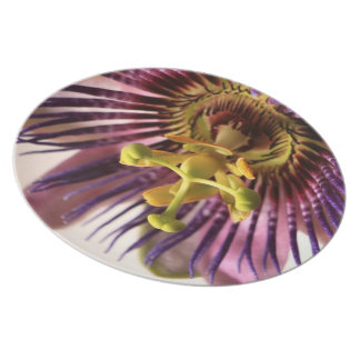 Melamine plate with Passiflora 03
