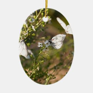 Melanargia larissa type of anatolia butterflies ceramic ornament