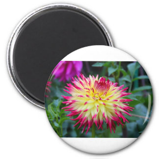 Melancholy No More 2 Inch Round Magnet