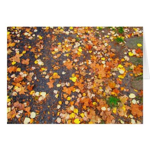 Melange of Leaves Note Card