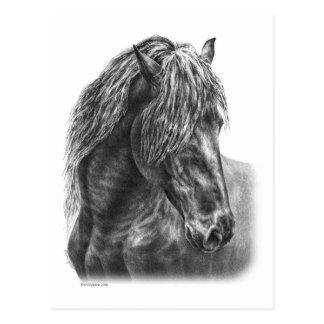 Melena ondulada del retrato frisio del caballo postal