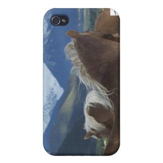 Melenas y montañas iPhone 4 fundas