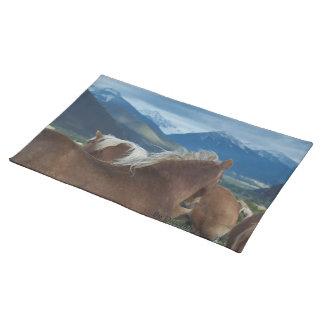 Melenas y montañas Placemat Manteles Individuales