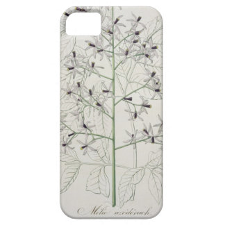 Melia Azedarach from 'Phytographie Medicale' by Jo iPhone SE/5/5s Case