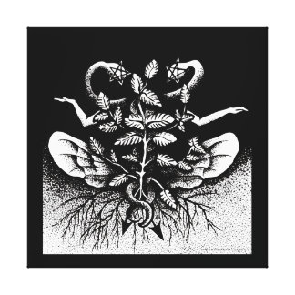 Melissa officinalis (Lemon Balm) - On Black Canvas Print