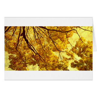 Mellow Autumn Card