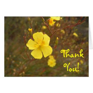 Mellow Yellow Thank You Card