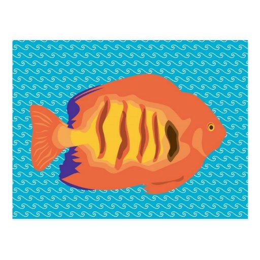 Melocotón a pescado postales