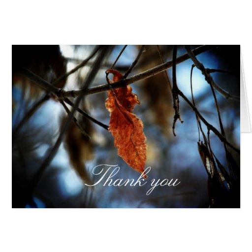 Melocotón del invierno tarjeta de felicitación