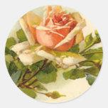 Melocotón del vintage de Catherine Klein subió - Pegatina Redonda