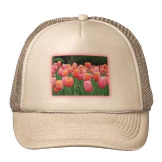 Melocotón y tulipanes rosados gorras