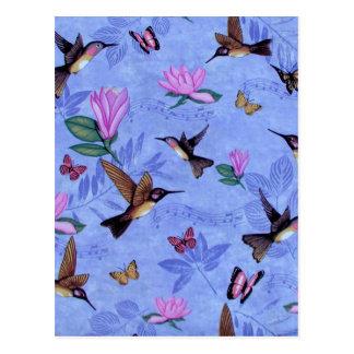 Melodía del colibrí postales