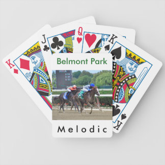 Melodic by Tale of the Cat Bicycle Playing Cards