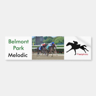 Melodic by Tale of the Cat Bumper Sticker