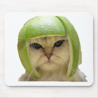 melon cat mouse pad